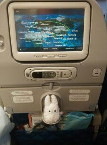 Totoro dans l'avion