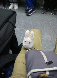 Totoro dans le métro