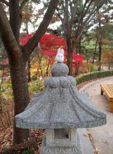 un joli jardin a Daegu !