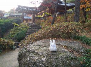 Totoro sur une pierre en Corée